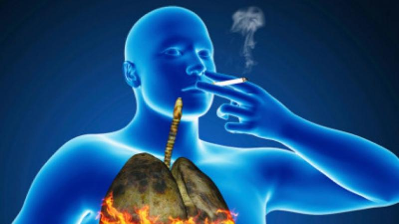 Как тютюнопушенето вреди на Вашето здраве?